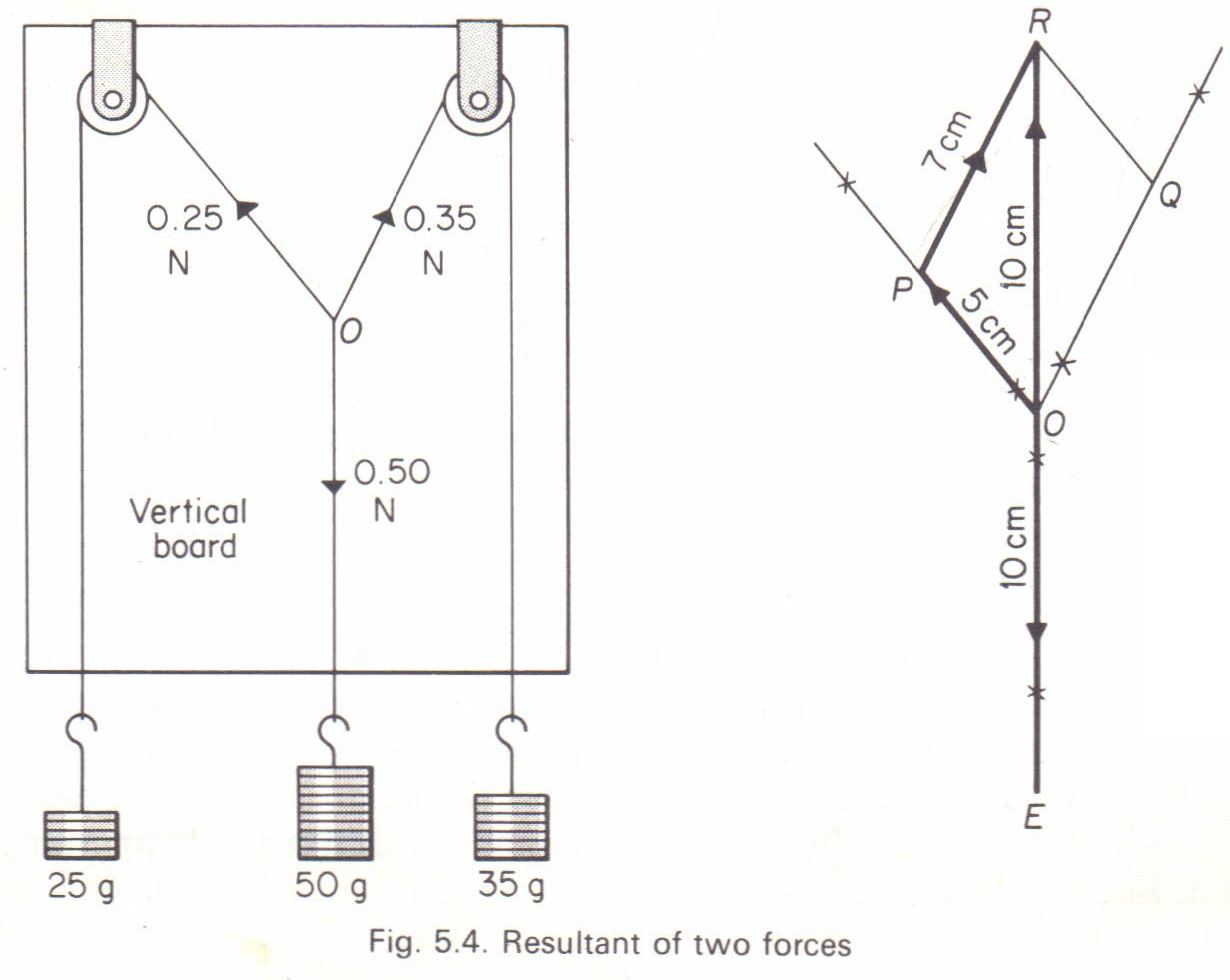 Parallel vectors  Article about parallel vectors by The