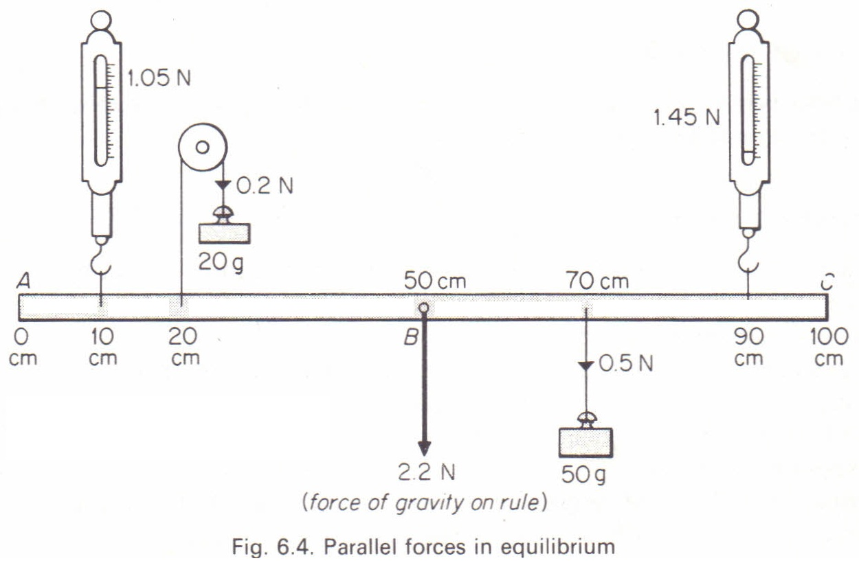a lab report of forces being in equilibrium essay If you apply your force too close to the hinges, the door will open slowly, if at all   in equation form, the magnitude of torque is defined to be τ = rf sin θ size.