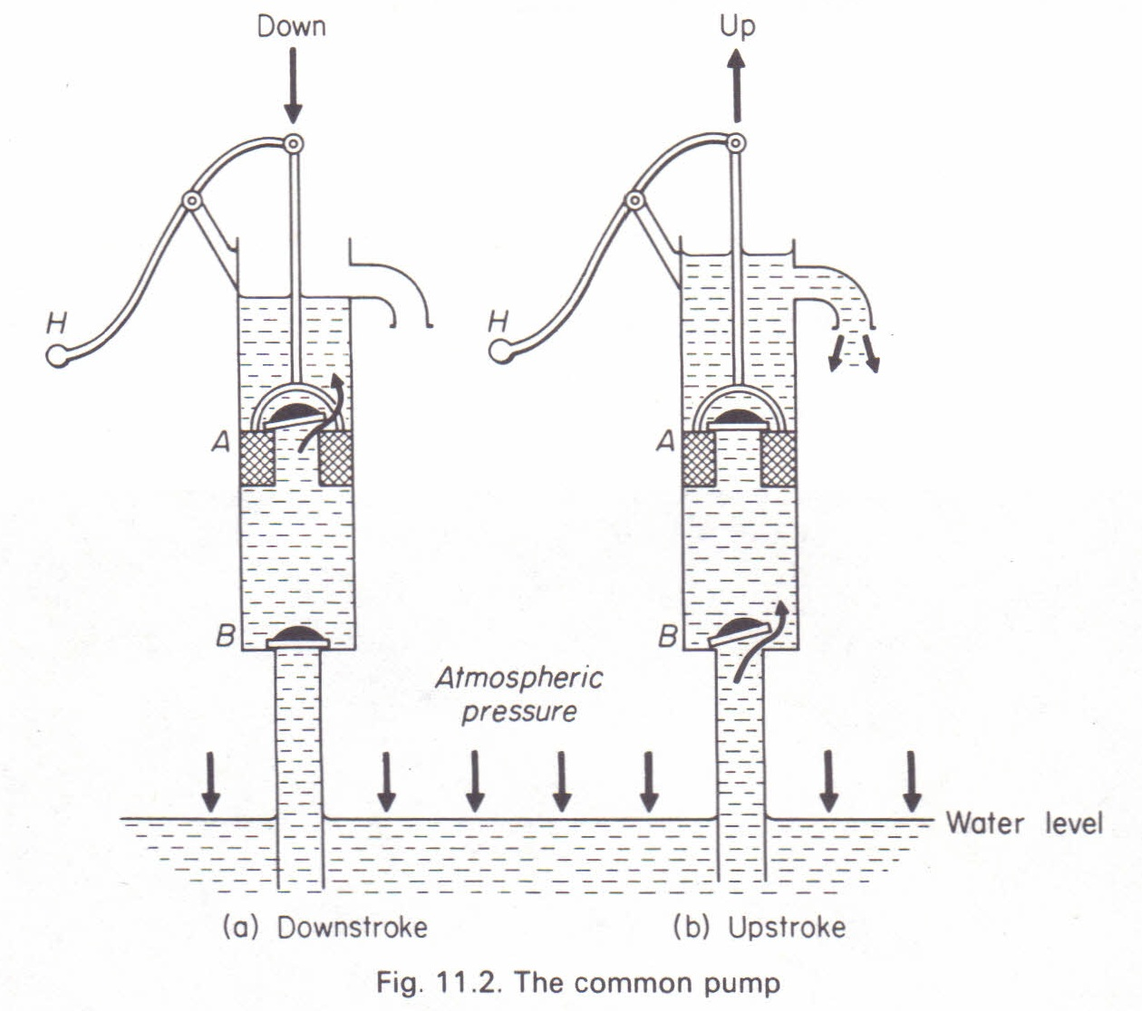 the common pump  lift pump  physics homework help  physics