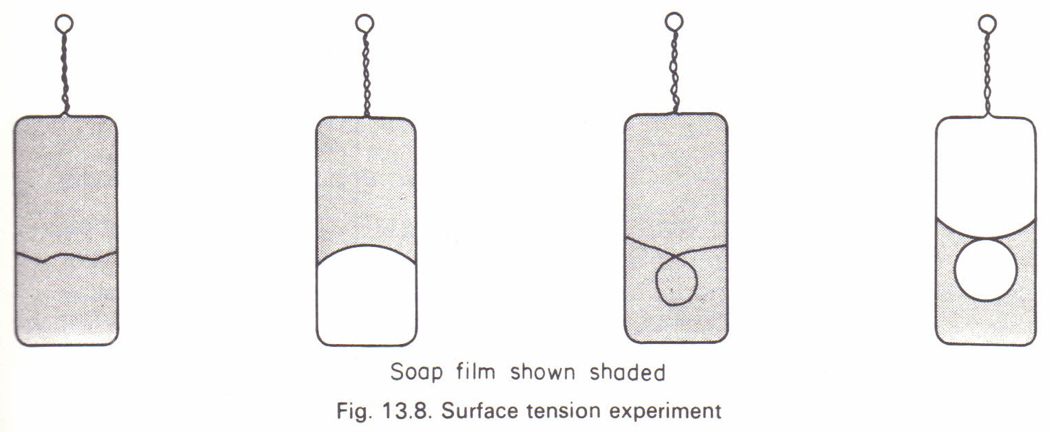 Further illustrations of surface tension Physics Homework