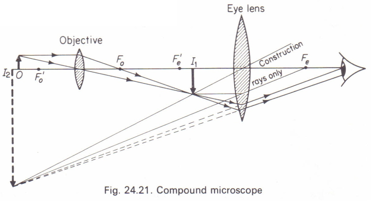 the compound microscope physics homework help physics assignments the compound microscope