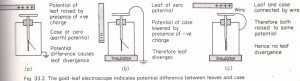 Potential and the gold-leaf electroscope