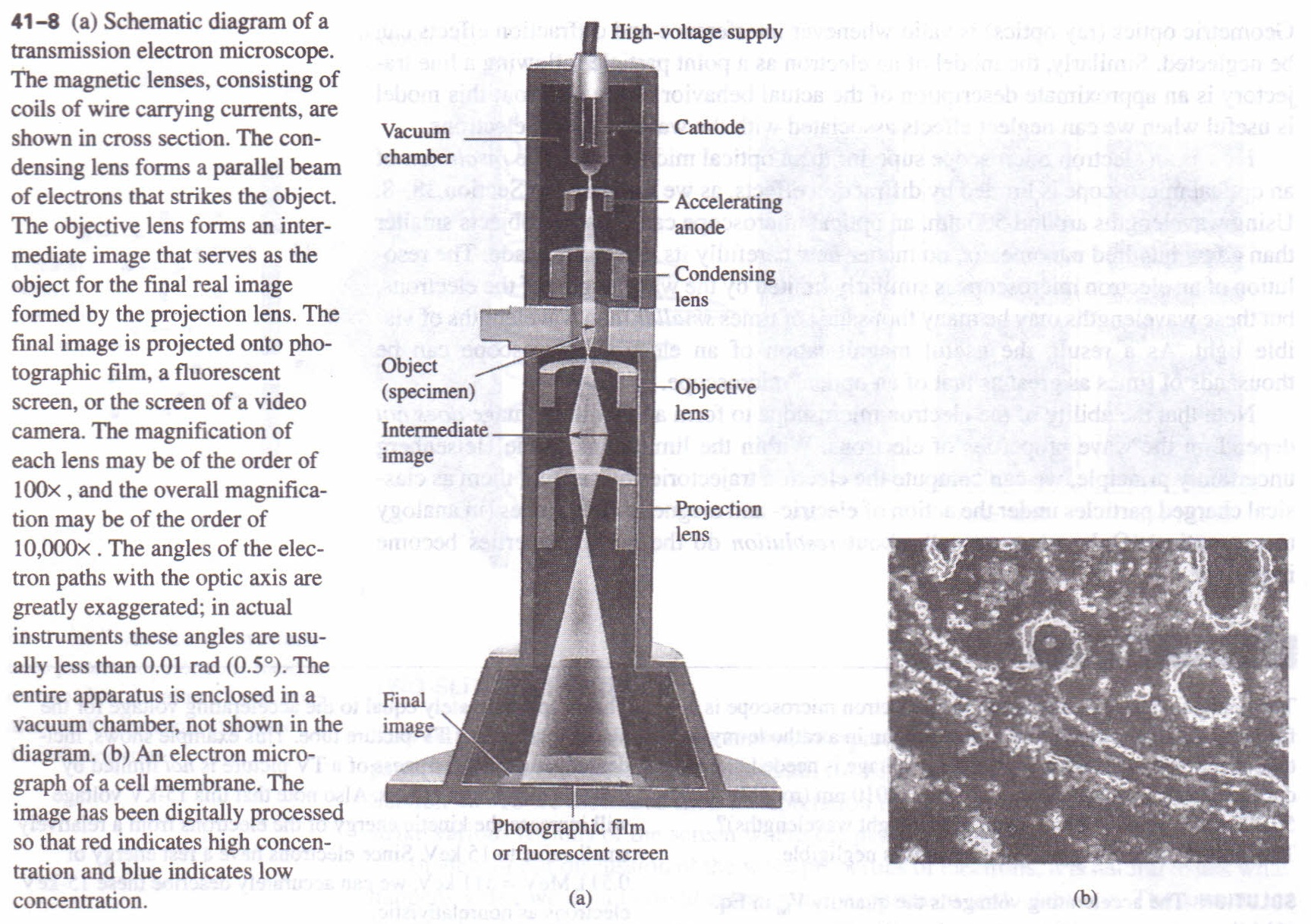 the microscope physics homework help physics assignments and properties of a lens middot the transmission electron microscope