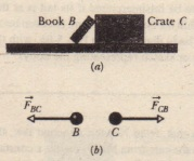 (a) Book B leans against crate C. (b) According to Newton's third law, the force Fac on the book from the crate has the same magnitude but the opposite direction of the force FCII on the crate from the book