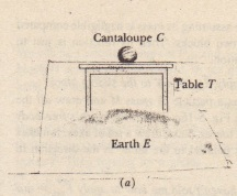 (a) A cantaloupe lies on a table that stands on Earth. (b) The forces on the cantaloupe are Fa and FcE. (c) The third-law force pair for the cantaloupe-Earth interaction. (d) The third-law force pair for the cantaloupe-table interaction