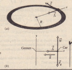 (a) A car moves around a flat curved road at constant speed v. The frictional force t.provides the neeessary centripetal force along a radial axis r. (b) A freebody diagram (not to scale) for the car, in the vertical plane containing