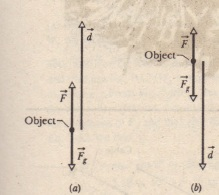 "(a) An applied force F lifts an object. The object's displacement d makes an angle 4> = 180"" with the gravitational force F, on the object"