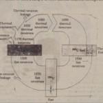The Nuclear Reactor