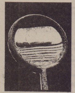 Fig. 36·14 The reflection of light from a soapy water film spanning a vertical loop. The top portion is so thin that the light reflected there undergoes destructive interference. making that portion dark. Colored interference fringes. or bands. decorate the rest of the film but are marred by circulation of liquid within the film as the liquid is gradually pulled downward by gravitation.